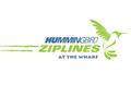 Hummingbird Zipline at The Wharf