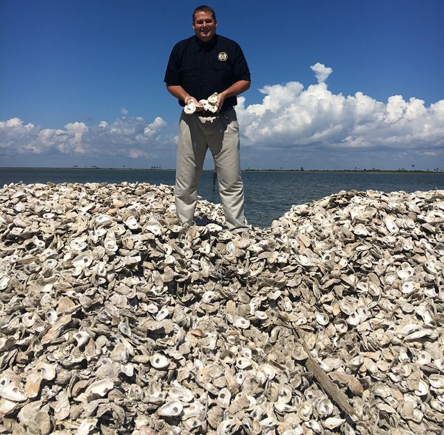 Chris Blankenship Oysters Curing
