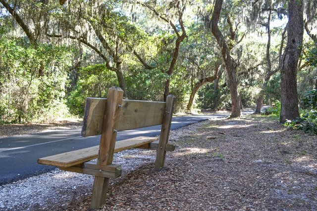 Hugh S Branyon Backcountry Trail is great for running in Gulf Shores