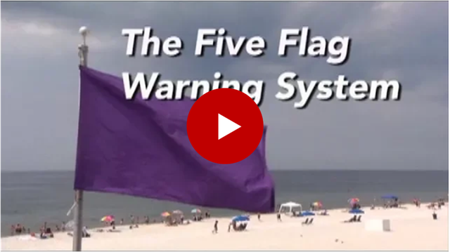 Five Flag System.png