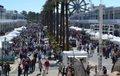 Seafood-Festival0_ Car Show.jpg