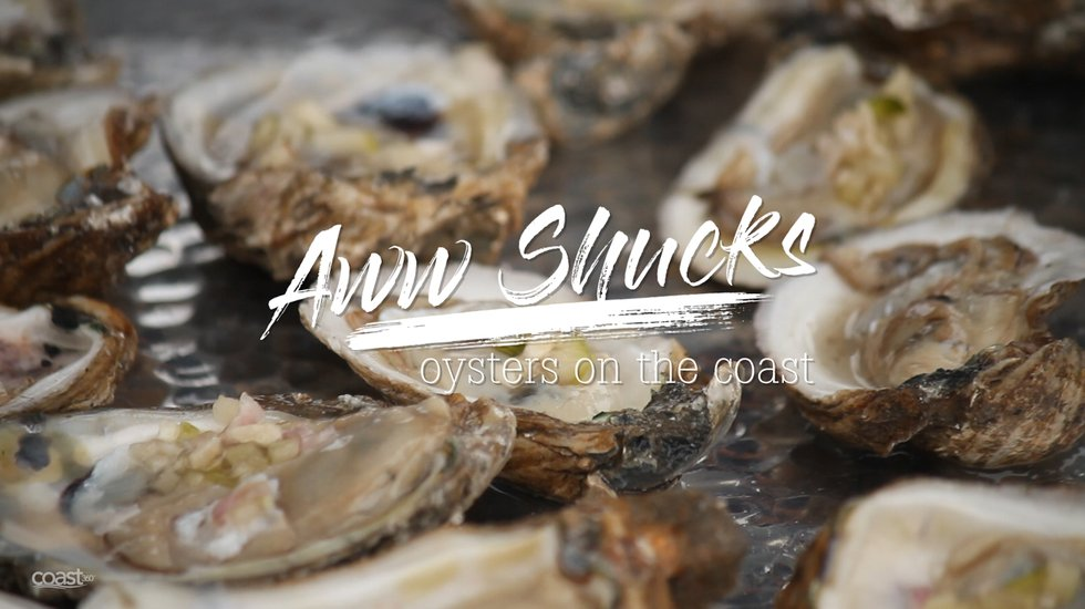 Aww, Shucks: Oysters on the Coast