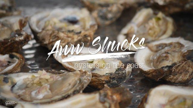 Aww, Shucks: Oysters on the Coast