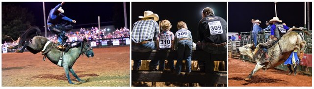 Foley Rodeo Collage Snip it.PNG