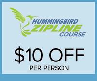 HummingbirdZipline_300x250.png