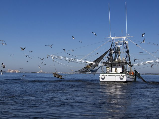 Gulf Shores Seafood Shrimping Boat