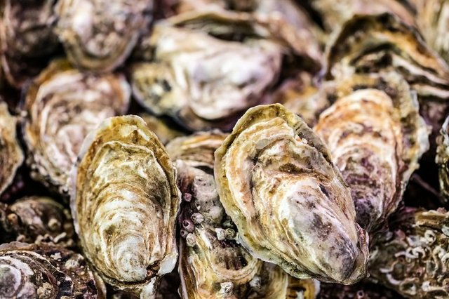 Gulf Shores Seafood Oysters