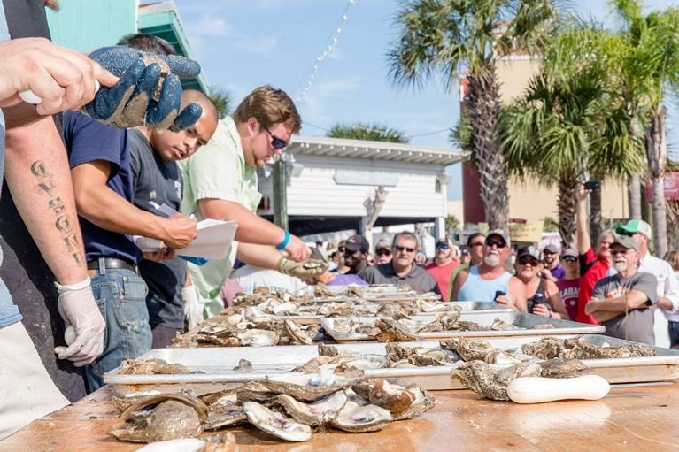 Gulf Shores Seafood - Oyster Shucking at The Hangout Oyster Cookoff