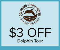 Dolphins Down Under