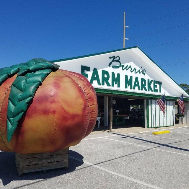 Burris Farm Market_FB.jpg