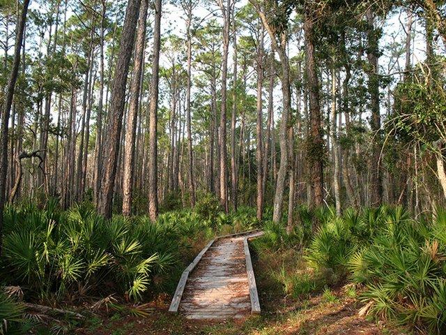 Bon Secour National Wildlife Refuge in Foley, Alabama
