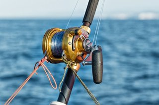 Cook Your Catch in Gulf Shores, Alabama