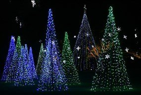 Magic Christmas in Lights at Bellingrath Gardens and Home
